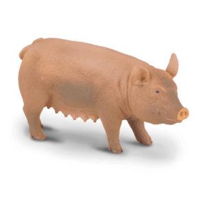 Γουρούνα