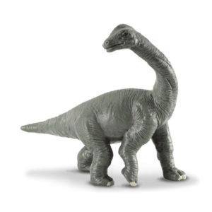 Βραχιόσαυρος Μωρό