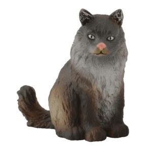 Γάτα Νορβηγικού Δάσους – καθιστή