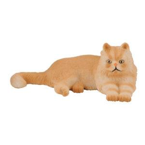 Γάτα Περσίας – ξαπλωμένη