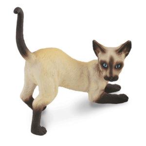 Σιαμέζα Γάτα – τεντωμένη