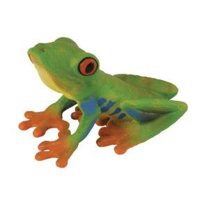 Ερυθρόφθαλμος Δενδρόβιος Βάτραχος