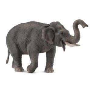Ασιατικός Ελέφαντας