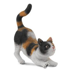 Τρίχρωμη Γάτα – τεντωμένη