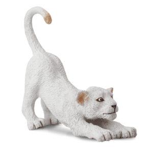 Λευκό Λιονταράκι (τεντώνεται)