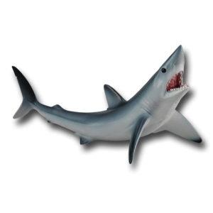 Ρυγχοκαρχαρίας