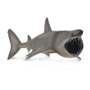 Σαπουνάς (Καρχαρίας Προσκυνητής)