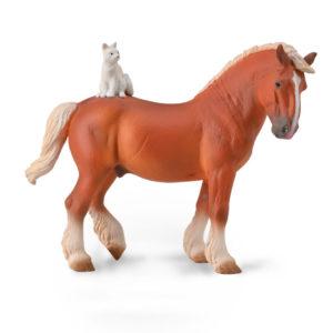 Άλογο Εργασίας Με Γάτα