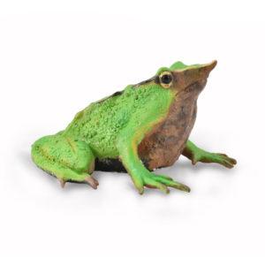Βάτραχος Του Δαρβίνου